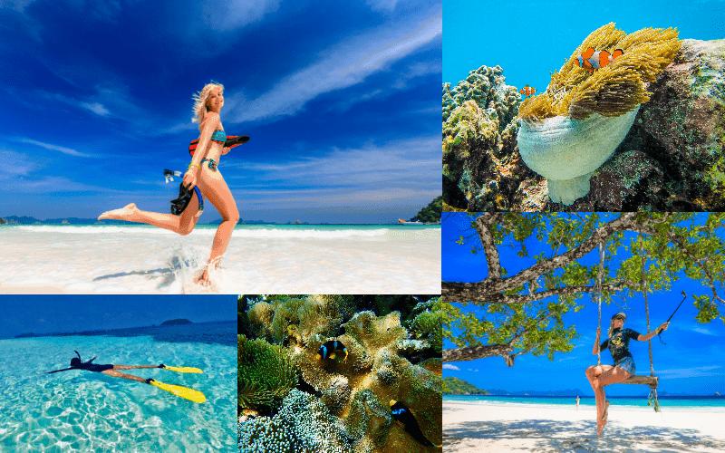 ดำน้ำเกาะนาวโอพี ทะเลพม่า