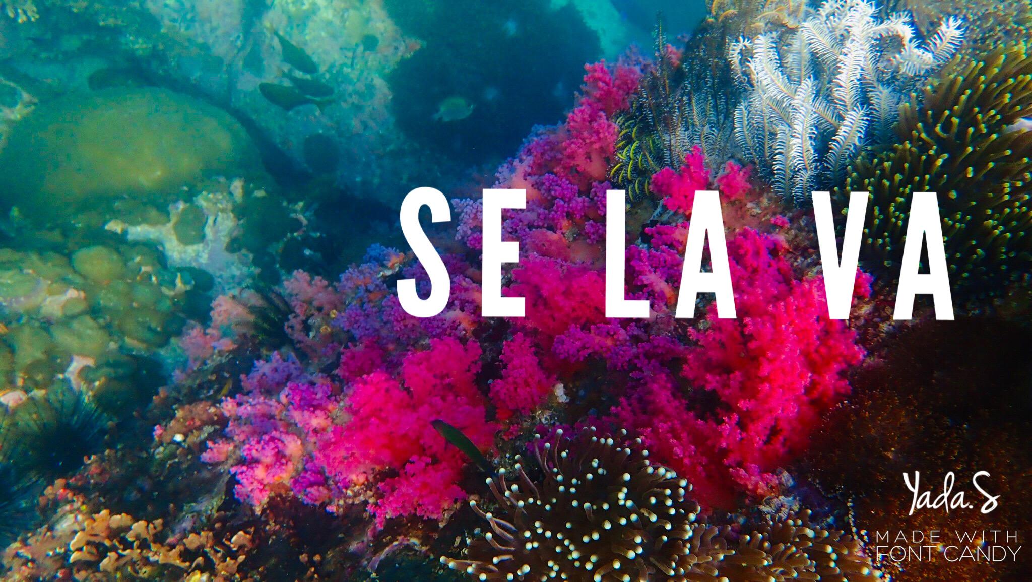 ทะเล พม่า เกาะเซลาวา จังหวัดระนอง