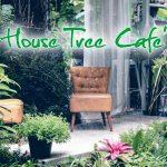 คาเฟ่ ร้านกาแฟ ในกระบี่ : บ้านต้นไม้