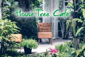 คาเฟ่ ร้านกาแฟ ในกระบี่ : บ้าน ต้นไม้